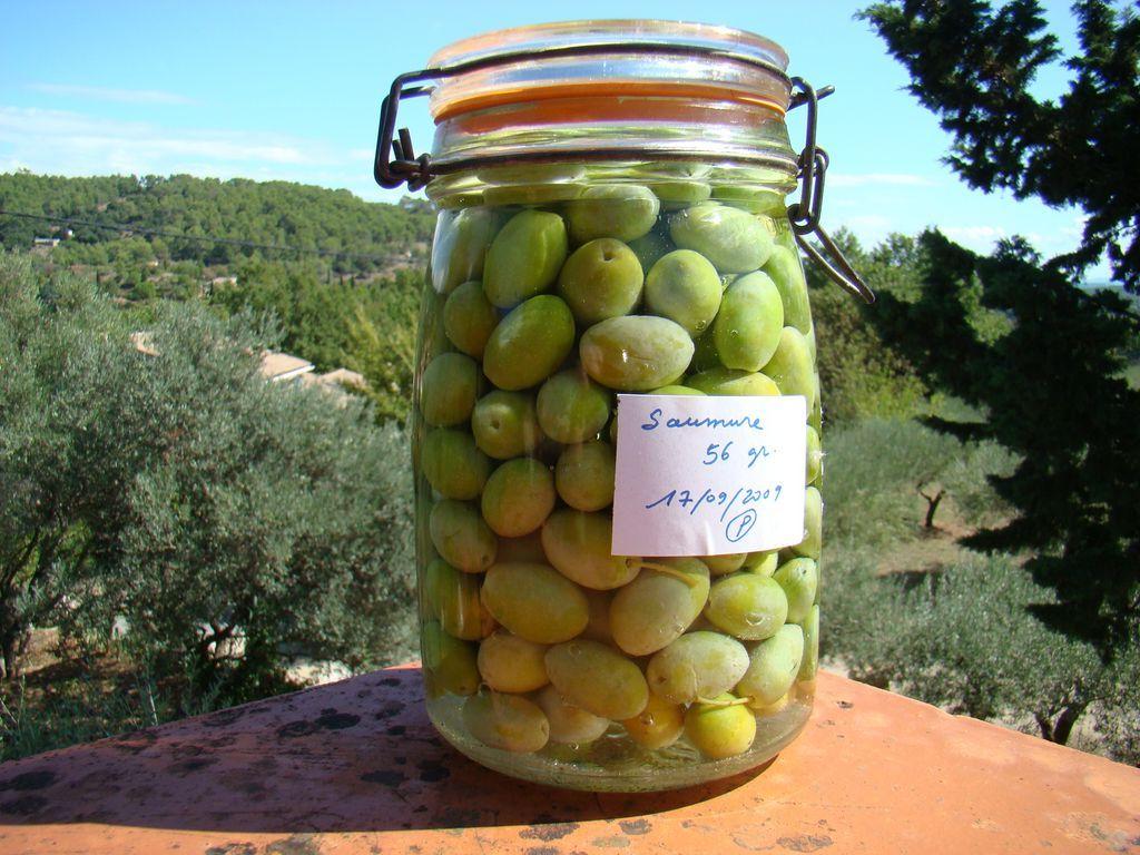 Comment bien conserver et préparer les olives ?